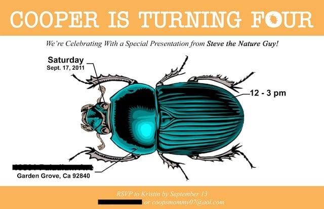Bug Birthday Party invitation