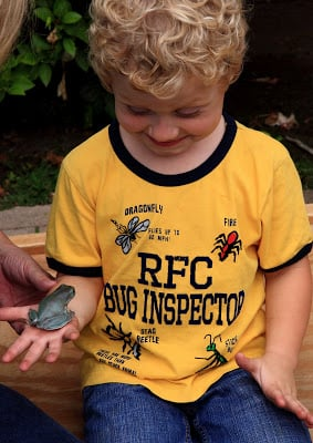A little boy holding a small frog