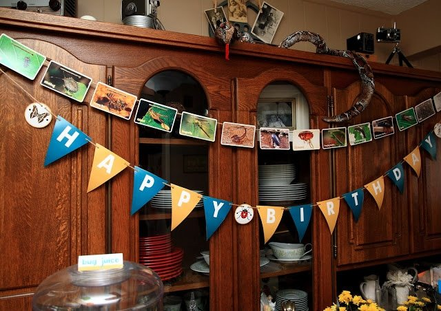 Happy birthday banner and bug pictures on a hutch