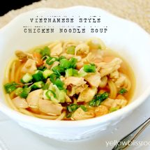 Vietnamese Style Chicken Noodle Soup