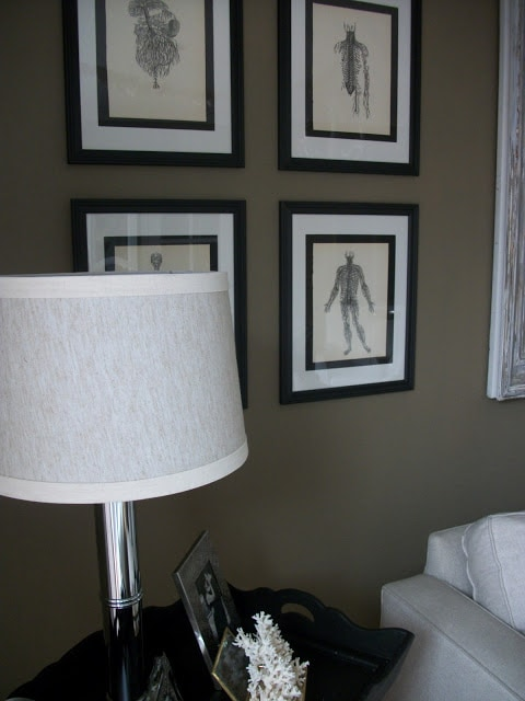 Living room with framed images on the wall