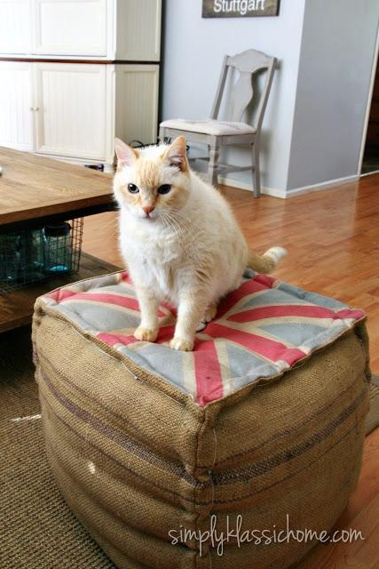 A cat sitting on a ottoman