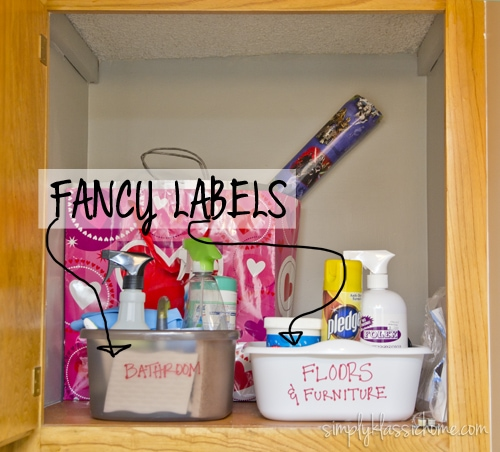 A cabinet with cleaning supplies