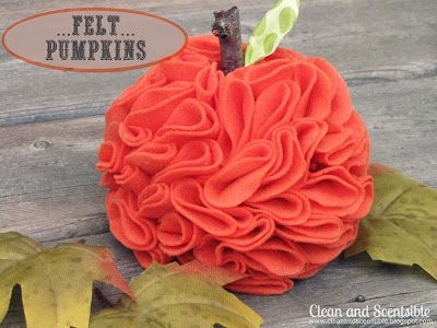Social media image of Felt Pumpkins