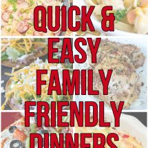 20+ Quick and Easy Family Friendly Meals