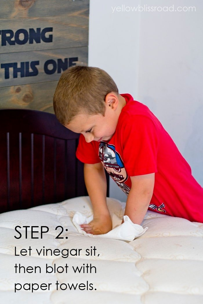 Cleaning Urine from a Mattress Step 2