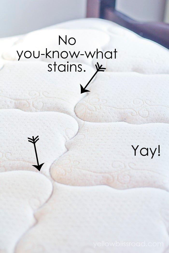 All Natural Mattress Cleaner To Remove Urine Stains Odors