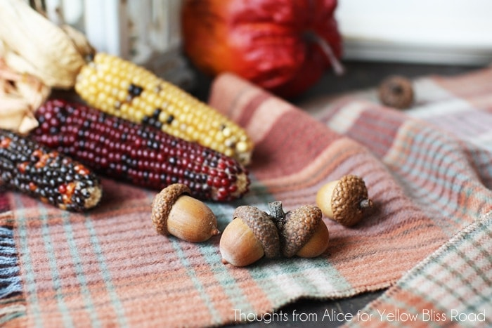Autumn Vignette with Natural Decor