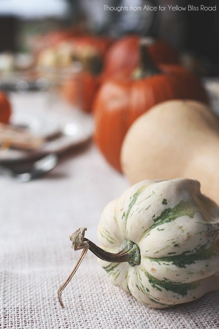 Squash Pumpkin and Gourd Table Centerpiece