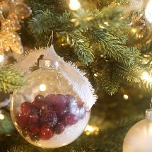Cranberry Epsom Salt Ornament