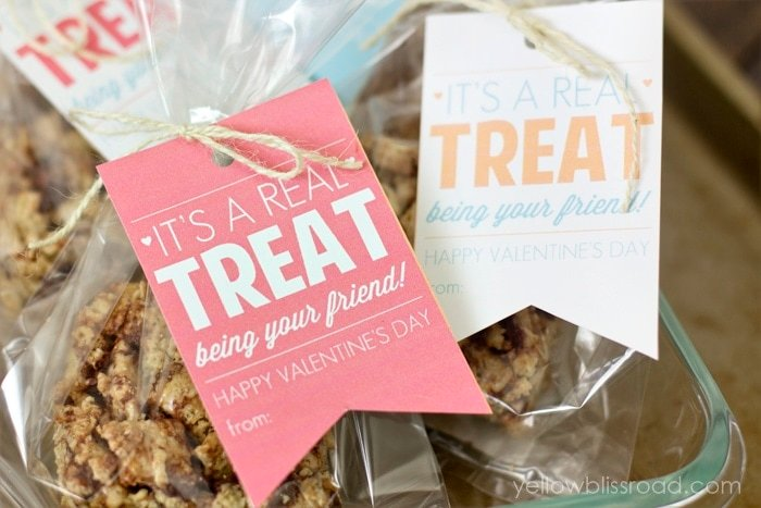 Classroom Valentine's for Boys or Girls