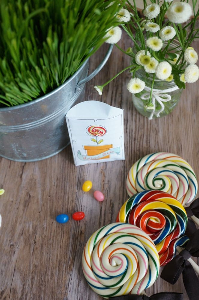 How to Plant a Lollipop Garden with Free Printable