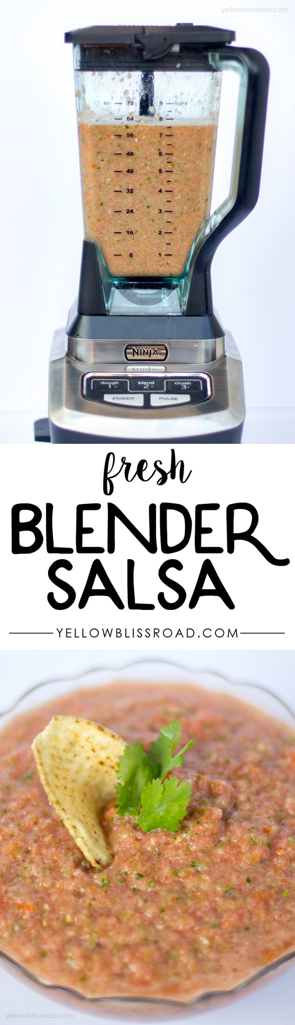 Super Easy and Full of Flavor Blender Salsa