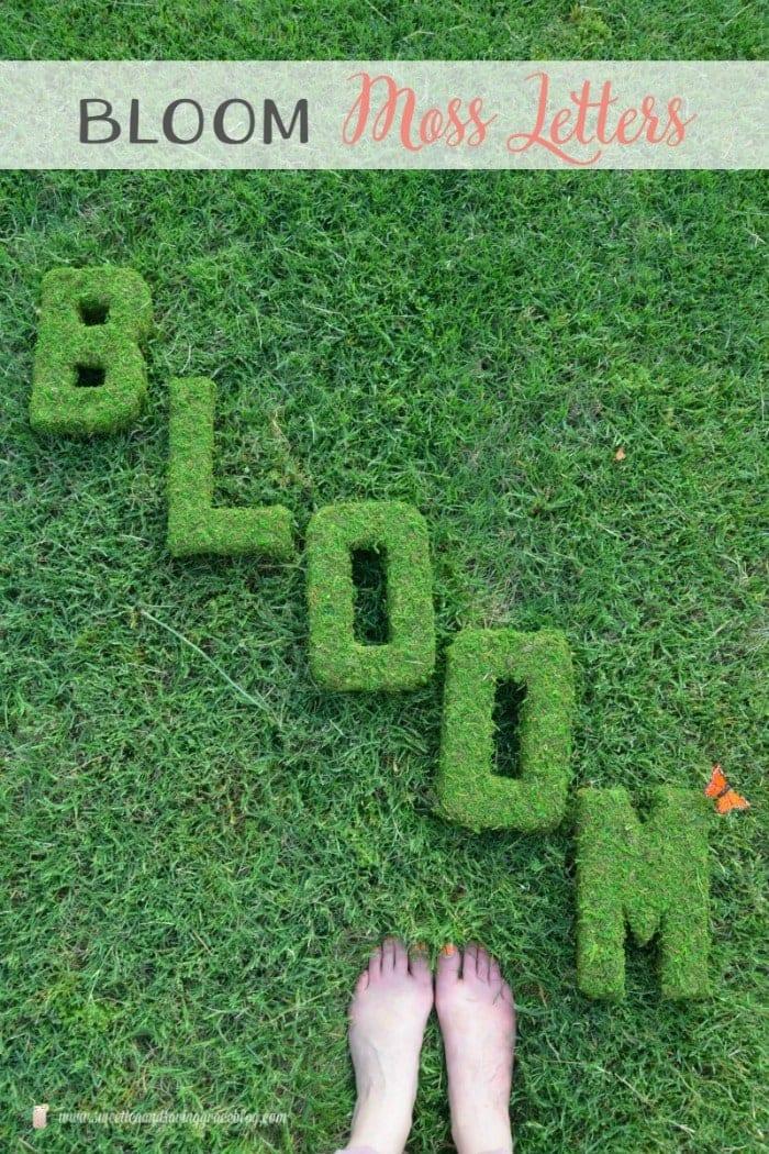 Bloom Moss Decor | Sweet Tea & Saving Grace