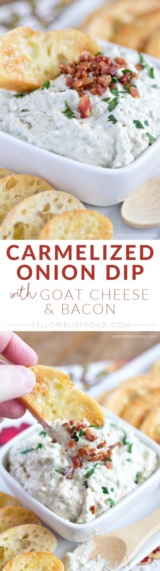 Carmelized Onion Dip with Goat Cheese and Bacon