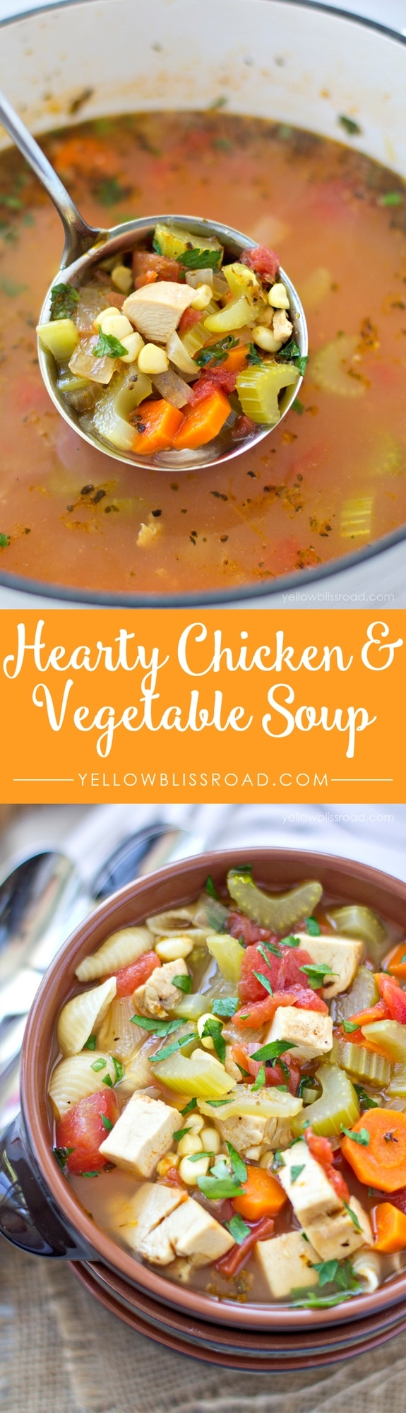 Hearty Chicken and Vegetable Soup with Noodles