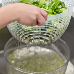 How to Wash and Store Lettuce and 12 Year Round Salads