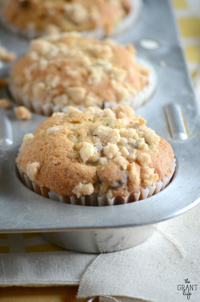 Bakery style chocolate chip muffins in a muffin pan