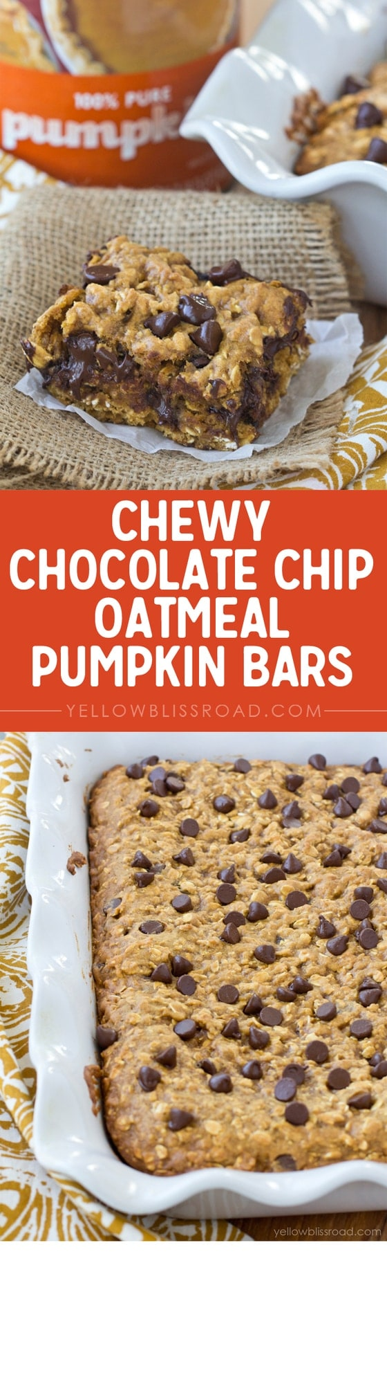 Chewy Chocolate Chip Oatmeal Pumpkin Bars