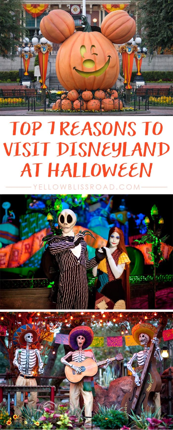 Top 7 Reasons to Visit Disneyland at Halloween