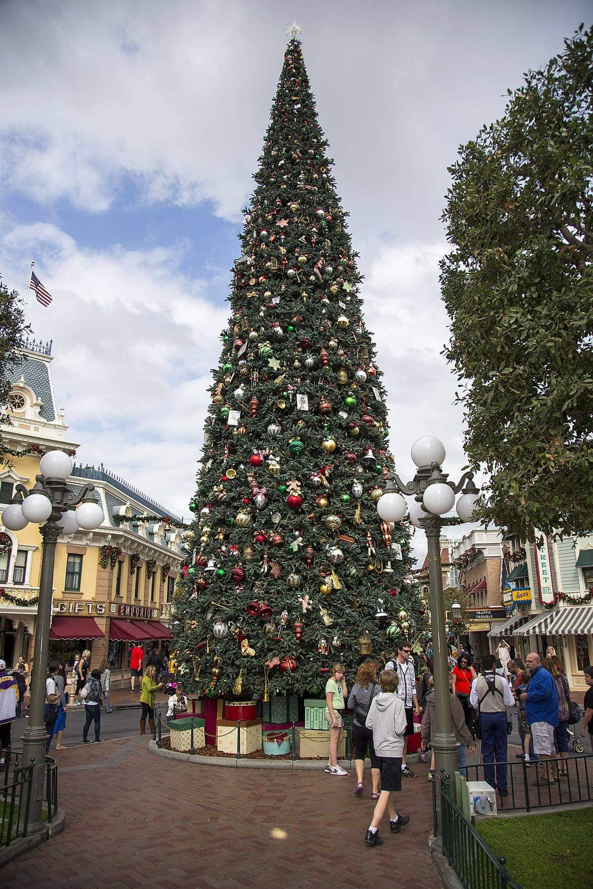 majestic christmas tree anaheim calif just for the holidays a