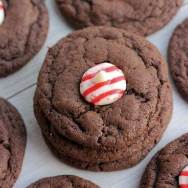 Close up of chocolate cookie