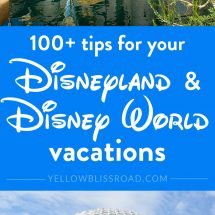 Disneyland and Disney World Travel Tips