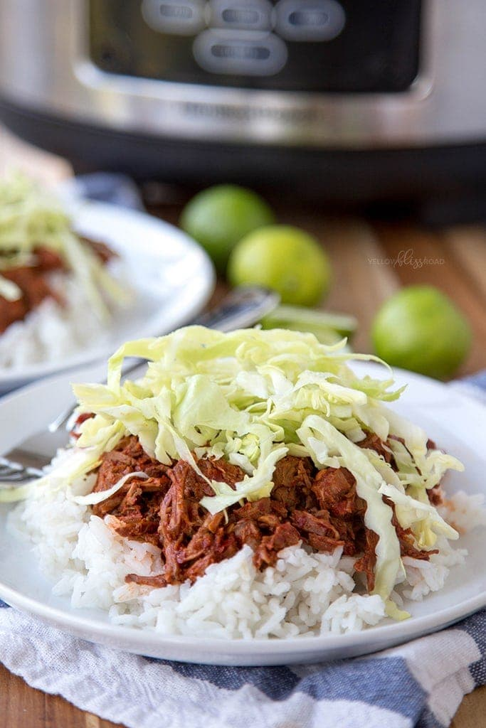 Slow Cooker Red Chile Beef 19
