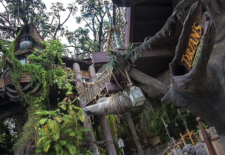 Tree branches and plants grow near wooden stairs and rope bridges at Tarzan's Treehouse in Adventureland at Disneyland Park in Anaheim, Calif. (Paul Hiffmeyer/Disneyland)