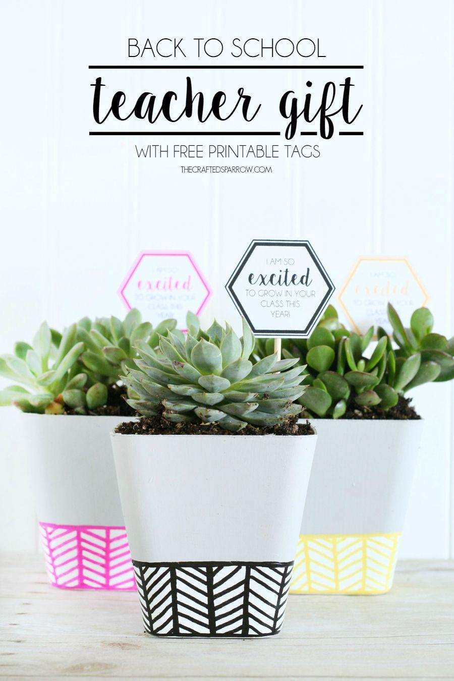 Back-to-School-Teacher-Gift-succulents