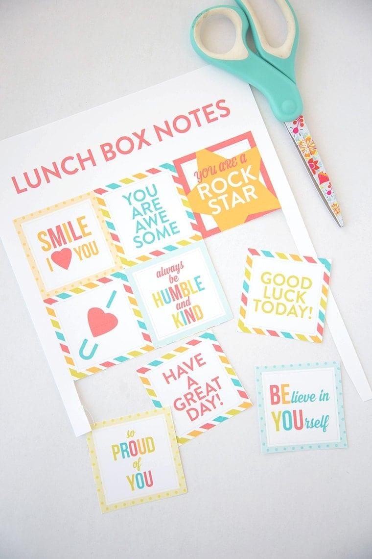 School Lunch Ideas (5 of 9)
