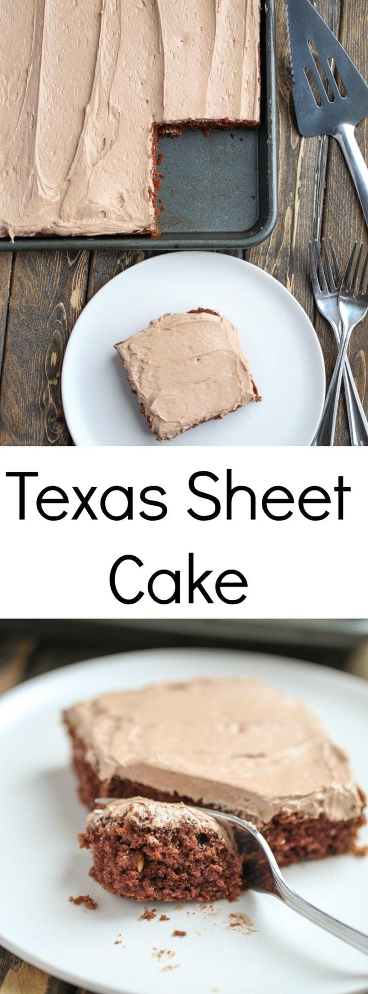 This Texas Sheet Cake is chocolate heaven! It is the perfect cake for a crowd, too.