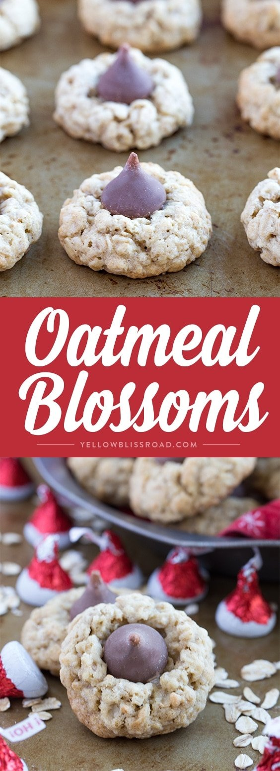 oatmeal-blossoms