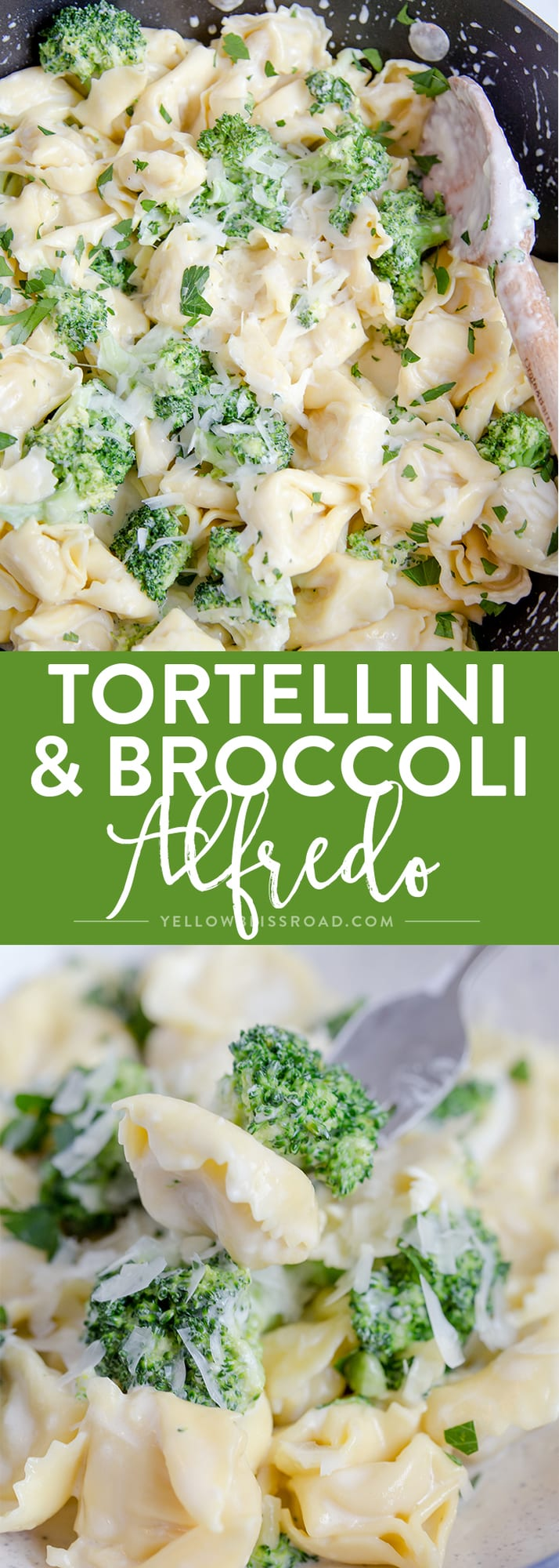 Broccoli Tortellini Alfredo comes together in just 15 minutes - It's great option when you need to get dinner on the table in a hurry.