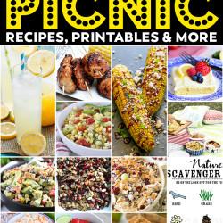 Best Ever Picnic Recipes & Ideas