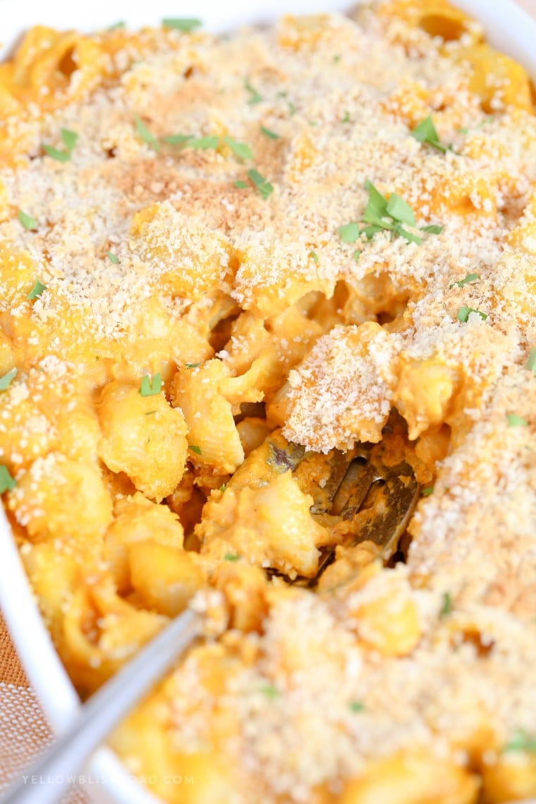 Baked Pumpkin Mac and Cheese Casserole
