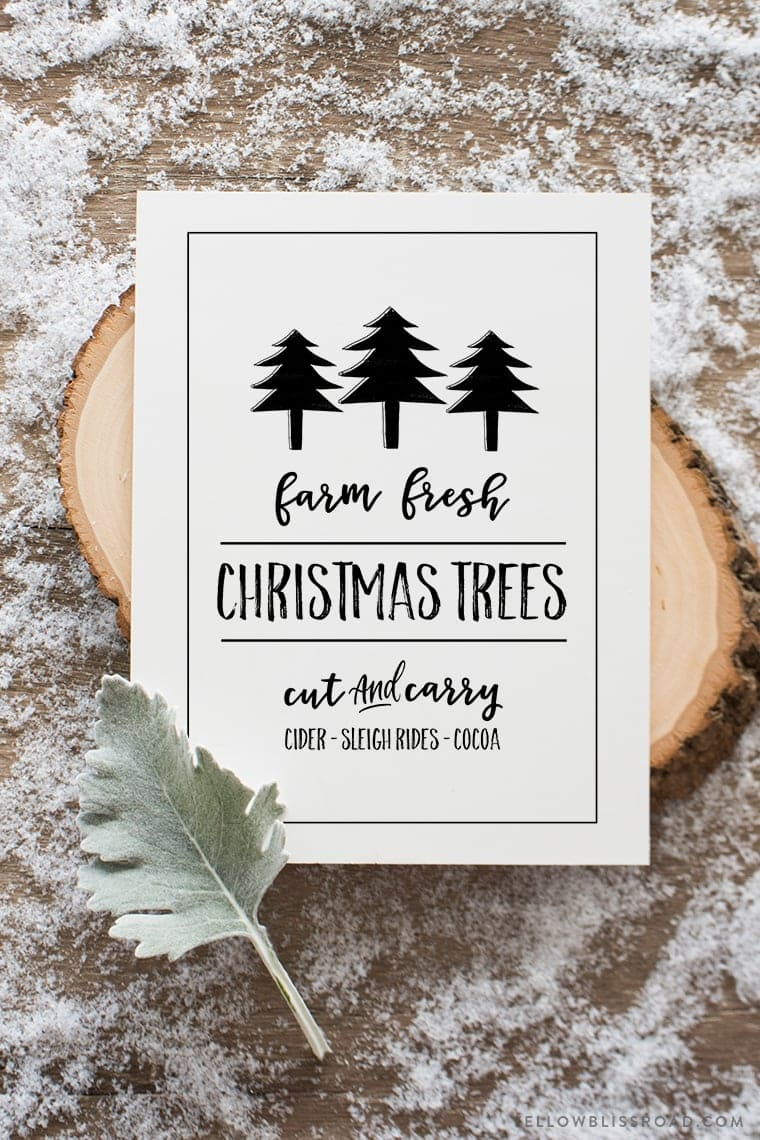 Free printable Christmas sign | Fresh Christmas Trees | Available in chalkboard and white background designs and 2 sizes