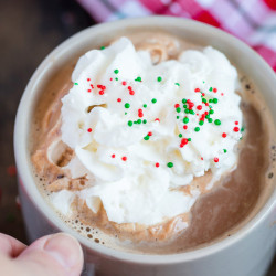 Slow Cooker Malted Hot Chocolate