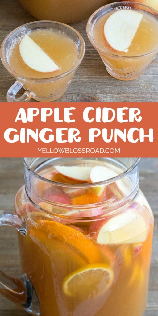 Apple Cider Ginger Punch is a delicious combination of applecider, ginger ale & lemon for an easy party punch the whole family loves!