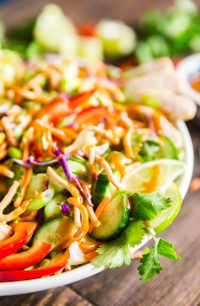 Asian Salad with Peanut Dressing is crisp, refreshing and full of delicious flavors- this is the perfect healthy main dish but can also be made to feel a crowd as a side dish or starter that will have people fighting for seconds!