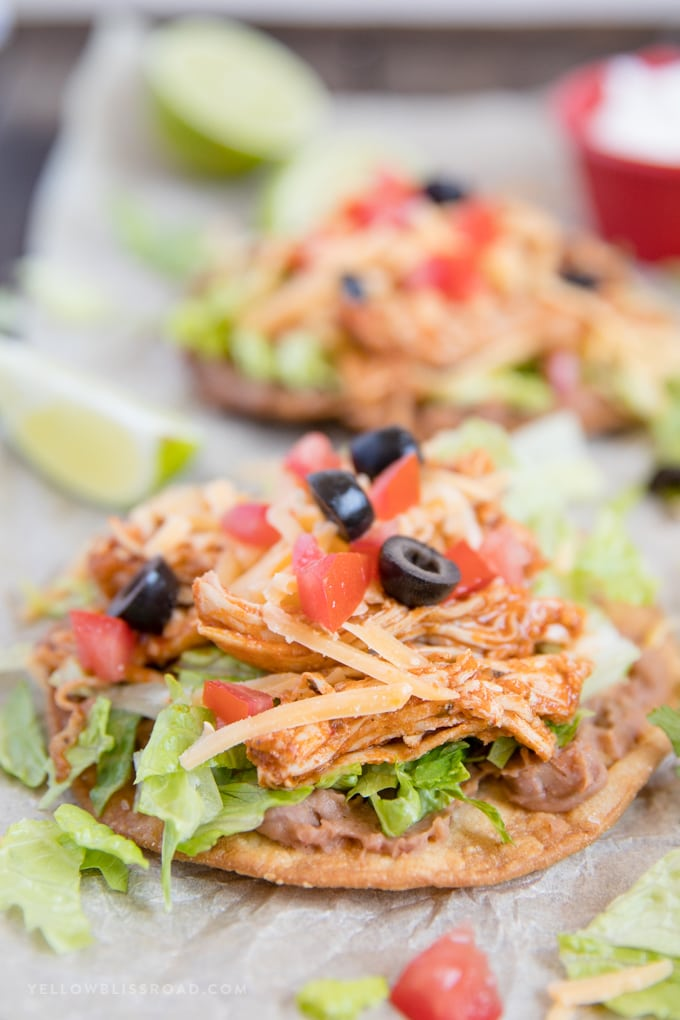 Close up photo of a chicken tostada