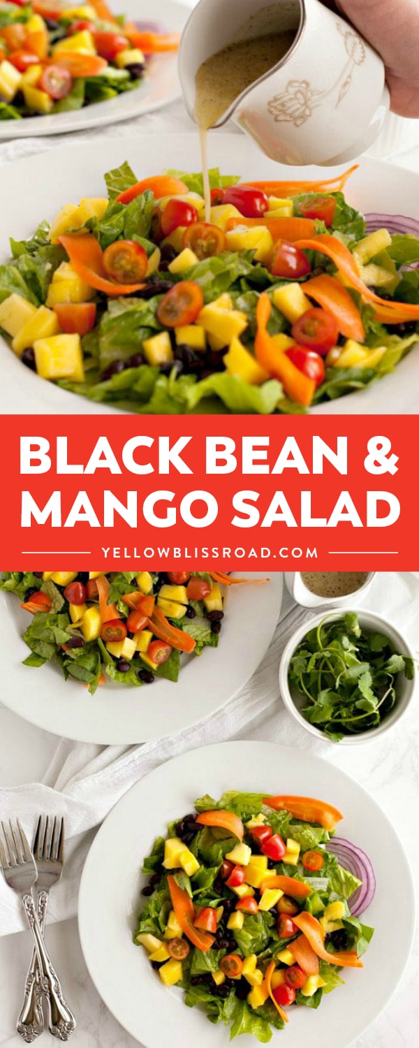 Whip up this delicious Black Bean and Mango Salad! So colorful and fresh with a light vinaigrette, it's perfect as a side dish or for the main course!