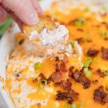 Chicken Crack Dip (Cheddar, Bacon, Ranch)
