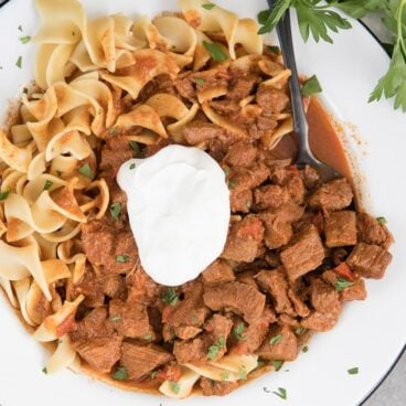 a square image of a white bowl with hungarian beef stew, egg noodles and sour cream
