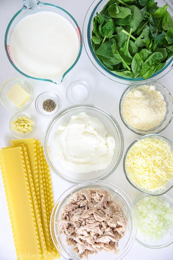 overhead image of ingredients for Chicken Alfredo Lasagna
