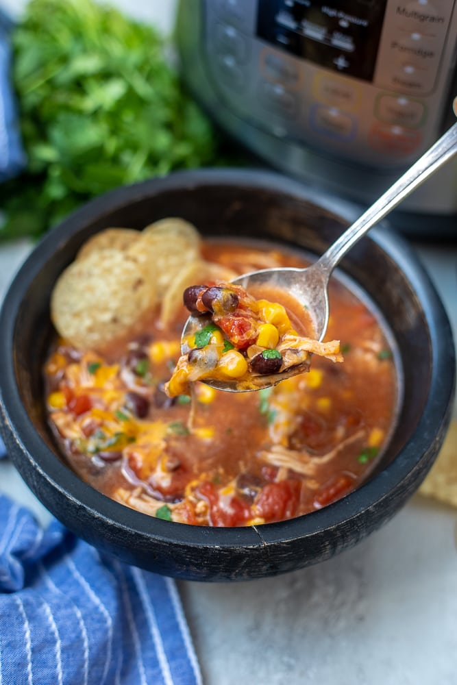 Spoonful of Instant Pot Mexican Soup
