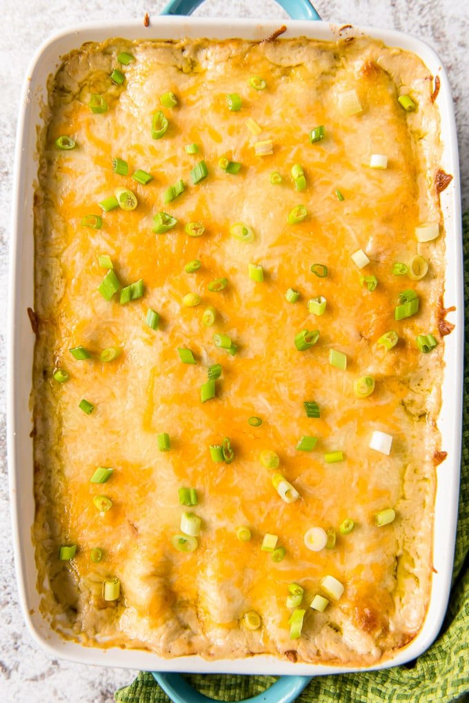 An overhead shot of a pan of creamy chicken enchiladas