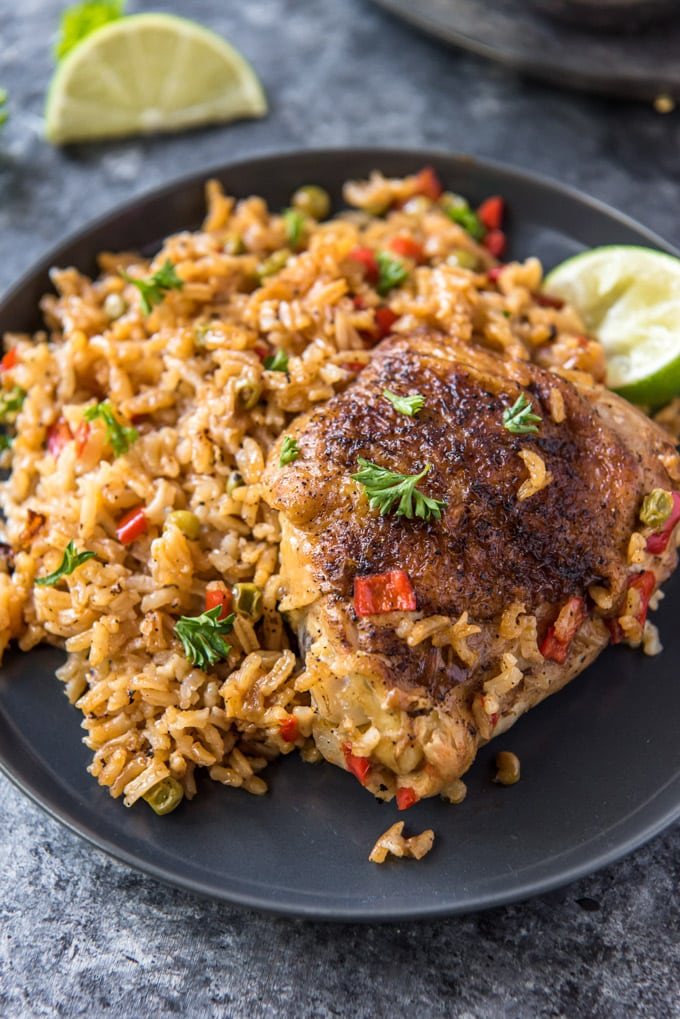 a plate with rice and a chicken thigh