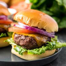 A close up of a Hamburger on a plate.