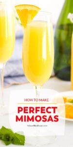 mimosa images with text for pinterest